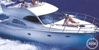 Motor boat La 0 2008