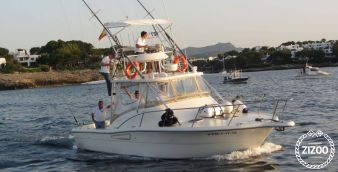 Motor boat Pursuit Offshore 3000 2004