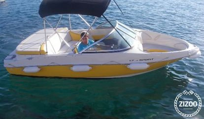 Speedboot Sea Ray 300 Sundancer (2010)