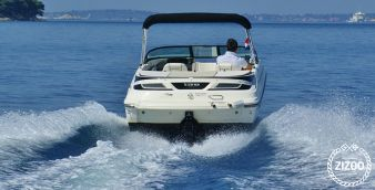 Rennboot Sea Ray 190 Sport 2014