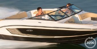 Motor boat Sea Ray 17 2016