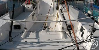 Barca a vela Pogo 30 2013