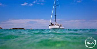 Sailboat Pogo 12.50 2014