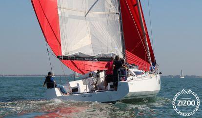 Segelboot Pogo 12.50 (2016)