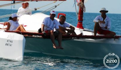 Catamarano Schionning Radical Bay 8000 (2013)