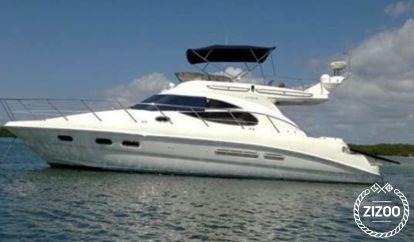 Barco a motor Sealine F 42 (2010)