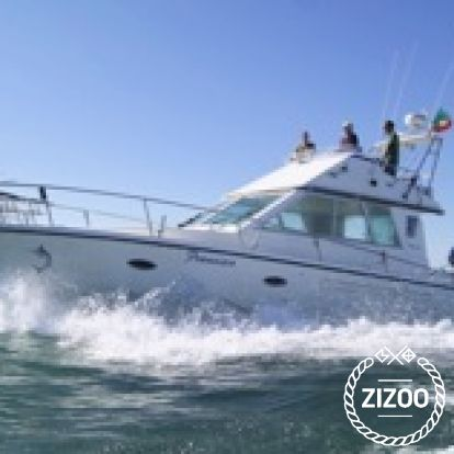 Motor boat Rodman 41 (2005)