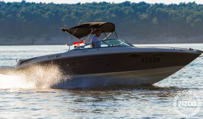 Speedboat Sea Ray 240 Sun Sport (2010)