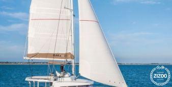 Catamaran Bali 4.3 (2019)