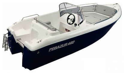 Motor boat Pegazus 460 (2019)