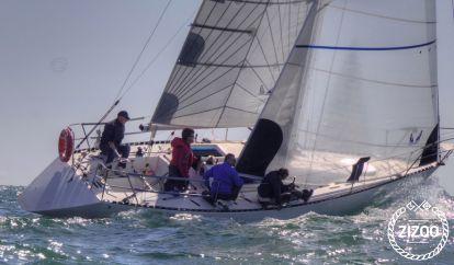 Sailboat Duck 31 (2012)