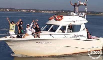 Motorboot Astinor 840 FLY (2001)
