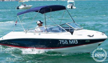 Sportboot Regal 2000 (2007)