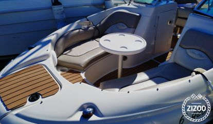 Motor boat Sea Ray 200 (2009)