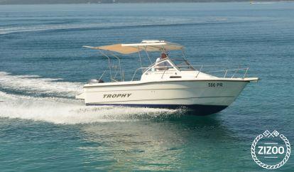 Motor boat Bayliner Trophy 1802 (2003)