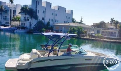 Motor boat Sea Ray 260 Sundancer (2010)