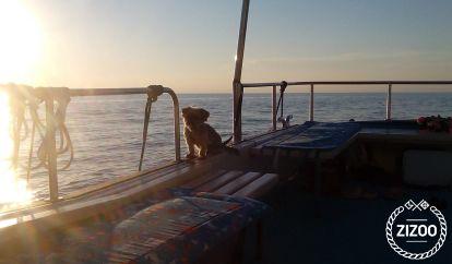 Houseboat Boot Motoryacht (2003)