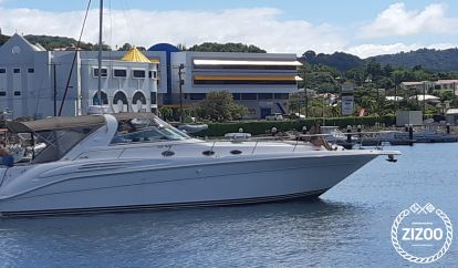Motorboot Sea Ray Motor Vessel (1996)