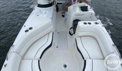 Speedboot Century Boats 256 (2005)