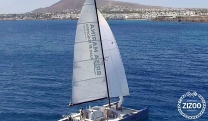 Catamarán Custom Built (1994)