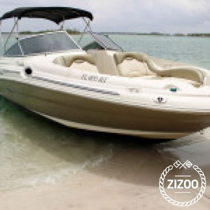 Speedboat Sea Ray 270 Sundeck (2000)