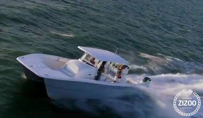 Sportboot Twin Vee 360 (2019)