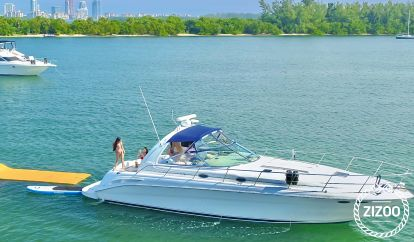 Motor boat Sea Ray 455 Sundancer (2008)